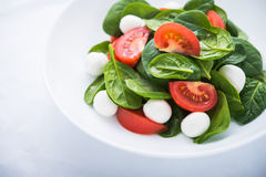 Fresh salad with mozzarella cheese, tomato and spinach on white paper background close up Stock Images