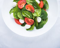 Fresh salad with mozzarella cheese, tomato and spinach on white paper background top view Stock Photos