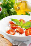 Fresh salad with mozzarella and cherry tomatoes, close-up Royalty Free Stock Photography