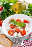 Fresh salad with mozzarella and cherry tomatoes Stock Images