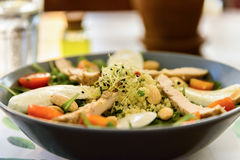 Fresh Salad With Mozzarella, Chicken, Tomatoes And Onion Germs Stock Images