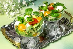 Fresh salad with mozzarella, tomatoes, avocado and lettuce. Fresh salad with mozzarella, tomatoes, sweet pepper, avocado and salad leaves. Concept of diet and Stock Photography