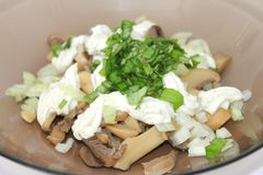 Fresh salad of mushrooms Stock Photos