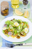 Fresh salad with mushrooms, squid and quail eggs Stock Photography