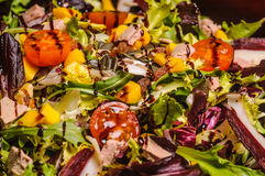 Fresh salad with nuts Royalty Free Stock Photo