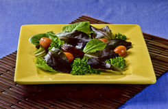 Fresh Salad in an Ochre Plate Stock Images