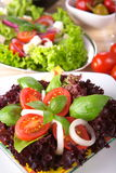 Fresh salad with onion tomato and basil Royalty Free Stock Image