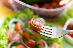 Fresh salad with onion, tomato and basil Royalty Free Stock Image