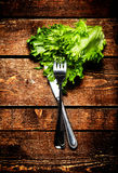 Fresh Salad over wooden table with knife and fork.  Diet Food an Stock Images