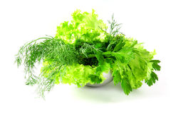 Fresh salad, parsley, dill on white background Stock Photo