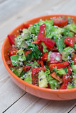 Fresh salad with pepper and tomato royalty free stock photo