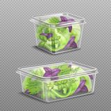 Fresh Salad Plastic Storage Transparent. Fresh green and purple salad leaves in 2 plastic food storage containers on transparent background realistic vector Stock Photography