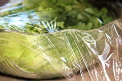 Fresh Salad With Plastic Wrap Covering Stock Image