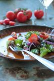 Fresh salad on a plate with fork royalty free stock photography