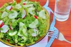 Fresh salad Royalty Free Stock Images