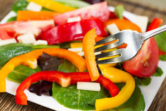 Fresh Salad on Plate Stock Photo