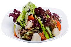 Fresh salad on plate isolated Stock Image