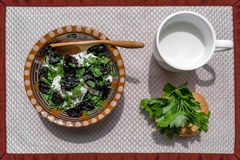 Fresh salad. With plums and cottage cheese on white background and a spoon in ukrainian decor stock photos