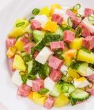 Fresh salad with potato, egg, salami, cucumber and green onion Royalty Free Stock Photo