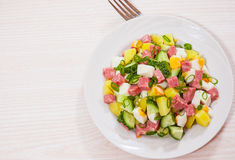 Fresh salad with potato, egg, salami, cucumber and green onion Royalty Free Stock Images