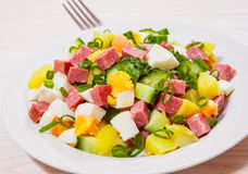 Fresh salad with potato, egg, salami, cucumber and green onion Stock Photo