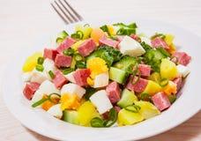 Fresh salad with potato, egg, salami, cucumber and green onion Stock Photo