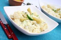 Fresh salad of potatoes Royalty Free Stock Images