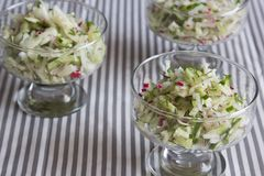 Fresh salad of radish and cucumber Royalty Free Stock Photography