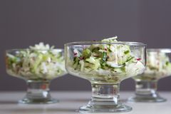 Fresh salad of radish and cucumber Royalty Free Stock Images