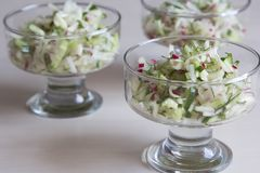 Fresh salad of radish and cucumber Stock Photography