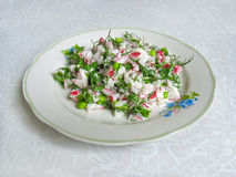 Fresh salad with radish and greens. On a plate Stock Photography