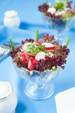 Fresh salad of radish and lettuce. Closeup Stock Photos
