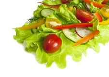 Fresh salad with radishes, cherry tomatoes and cucumbers. Isolated on white background Stock Image