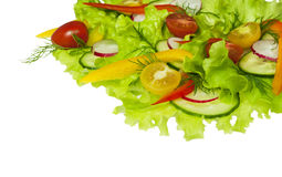 Fresh salad with radishes, cherry tomatoes and cucumbers Stock Images