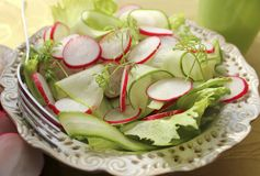 Fresh salad with radishes, lettuce and cucumber. ( close up Stock Images