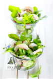 Fresh salad with radishes and mushrooms Royalty Free Stock Photo