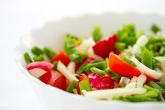 Fresh salad of radish and tomatoes Royalty Free Stock Photography