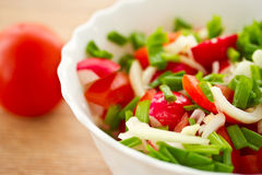 Fresh salad of radish and tomatoes Royalty Free Stock Photo