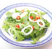 Fresh salad of rocket Stock Photo