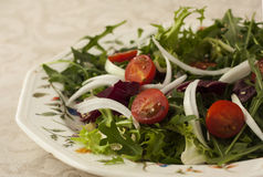 Fresh salad with rucola and tomatoes. A fresh salsd from  mediteranea Stock Photo
