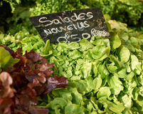 Fresh salad for sale Stock Photos