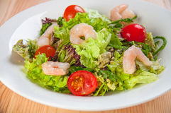 Fresh salad with seefood and tomatoes Royalty Free Stock Photo
