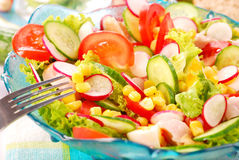 Fresh salad with smoked chicken Stock Photo