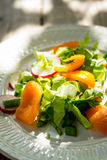 Fresh salad with summer vegetables on the wooden table Stock Images
