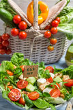 Fresh salad is a symbol of healthy eating Royalty Free Stock Images
