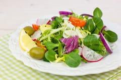 Fresh salad on the table Stock Photos