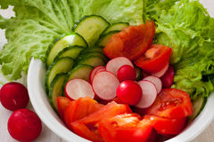 Fresh salad. On the table, lettuce, red radish, cucumber and tomato Stock Photography
