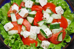 Fresh salad with tomato and cucumber. green Royalty Free Stock Images