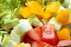 Fresh salad with tomato, cucumber, poivron and verdure Stock Images