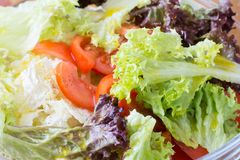 Fresh salad greens. Fresh salad of tomato, lettuce, parsley, greens. Healthy Eating Royalty Free Stock Images